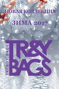 Новая стильная коллекция женских сумок. ЗИМА 2017 года